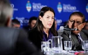 Mariana Matranga, secretaria de Energía de la Nación, en el Congreso